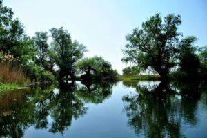 canalele Dunarii
